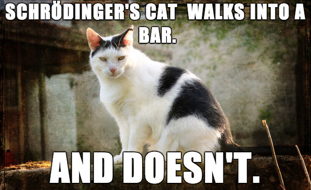 schrodinger-s-cat-walks-into-a-bar_orig
