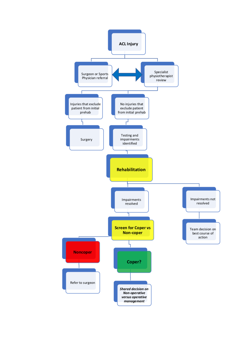 Decision flowchart for acl injuries
